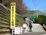 阪神タイガース!秋の安芸キャンプ