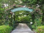 北川村「モネの庭」...マルモッタン