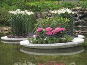 50周年記念庭園