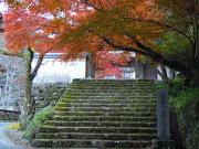 紅葉の青源寺
